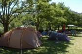 Campings & kampeerplaatsen campers