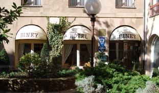 HOTEL BINEY - Rodez