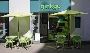 Ginkgo - Rodez
