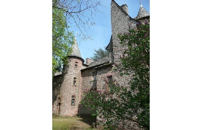 Château de Canac 2 - Onet-le-Château